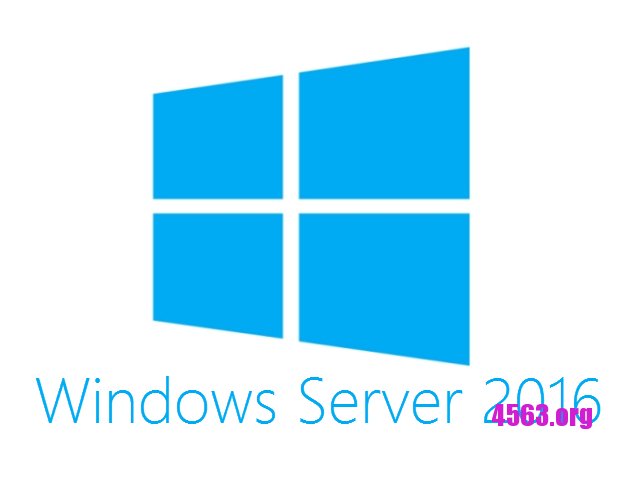 《[集郵] Windows Server 2016正版key》