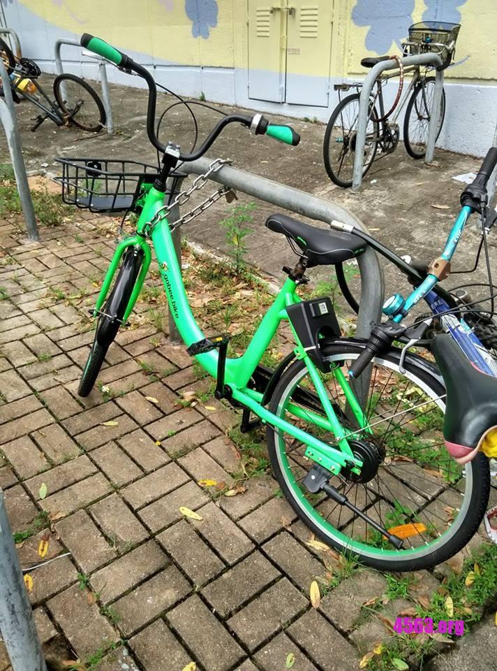 《私有化GoBee Bike共享單車 , 屈機~》
