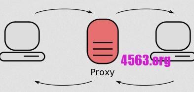Debian 8安裝kingate實現proxy , 親測有效