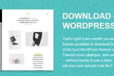 ThemeForest@7月限時免費@WordPress Theme@免費本地下載