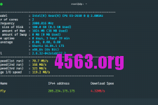DediPath – 1GB內存100G硬盤 VPS测评
