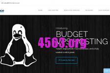 HiFormance:$72/年/4G内存/100GB空间/2TB流量/KVM/洛杉矶