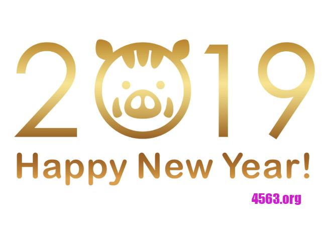 2019年1月1日新年快樂